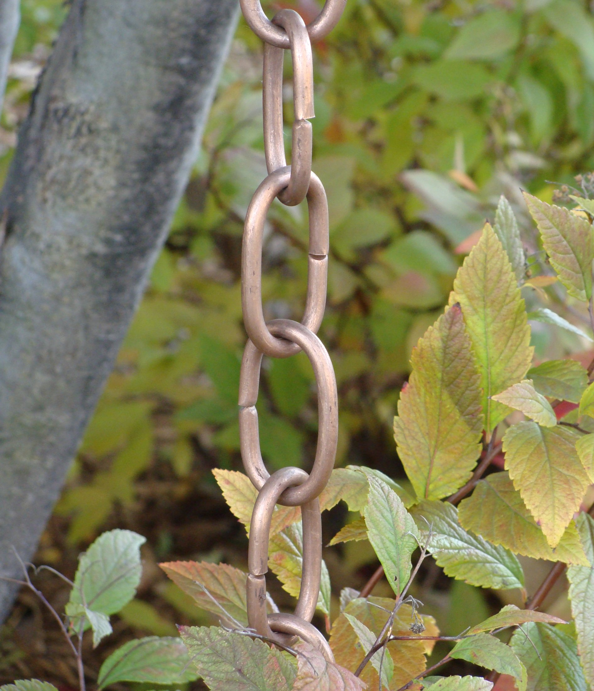 Large Link Rain Chain   Copper Rain Chain