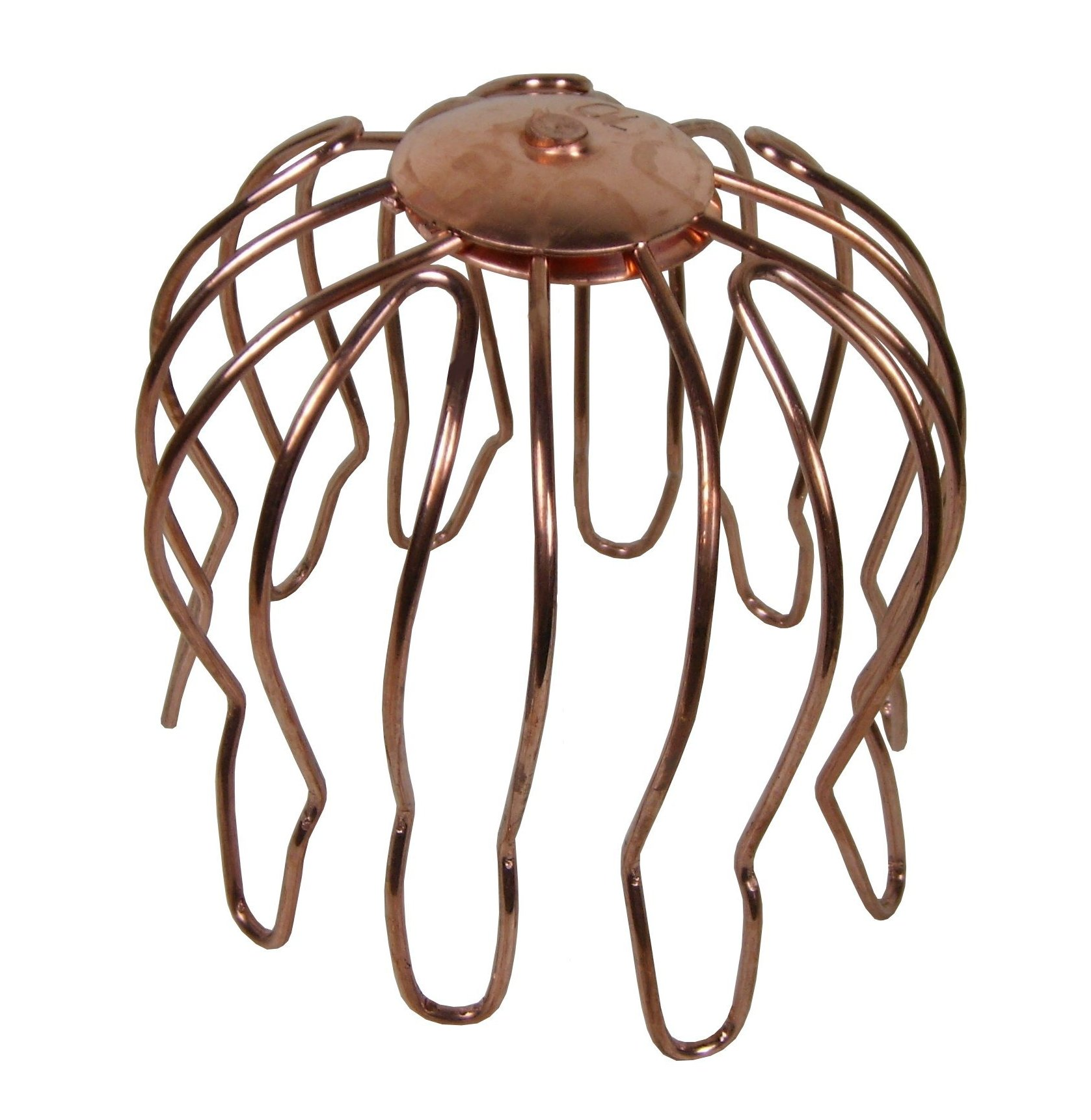 Wire Strainers Prevent Leaves And Other Debris From