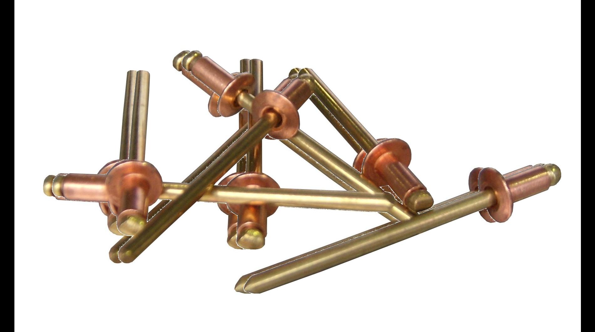 Copper Gutter Rivets